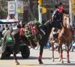 2014 Parades_1